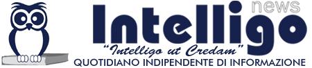 intelligo_header_logo